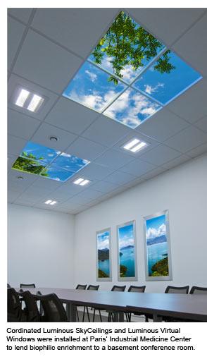 Sky Factory Luminous SkyCeilings and Luminous Virtual Windows transform a basement conference room.