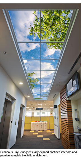 Sky Factory Luminous SkyCeiling transforms an office corridor.