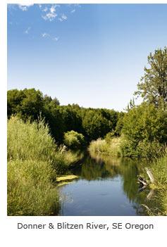 Donner & Blitzen River, SE Oregon