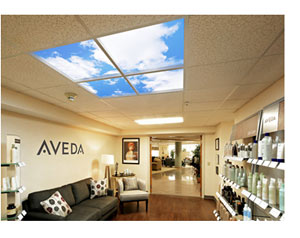 Luminous SkyCeiling at the Behive Salon and Spa