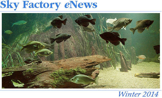 Sky Factory eNews - Winter 2014