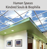 Human Spaces, Kindred Souls & Biophilia