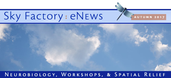 Sky Factory eNews - Autumn 2017