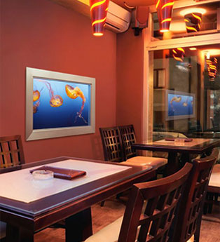 Sky Factory's virtual aquarium footage is captured, composed and framed to facilitate the illusion of depth