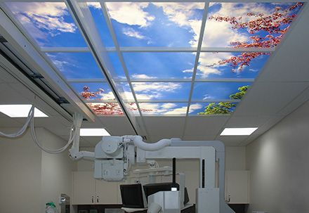 Sky factory ceiling murals id daily tm for Ceiling mural wallpaper