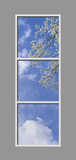Ceiling Design 6bk_01_2x6cr