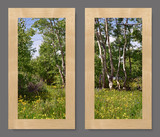 Photo Mural 6tzL_2-22x40crvr_rustic_maple