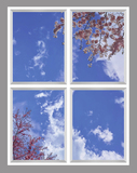Ceiling Design 8mq_6x8_r34