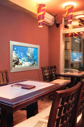 eSea Virtual Aquarium in a restaurant